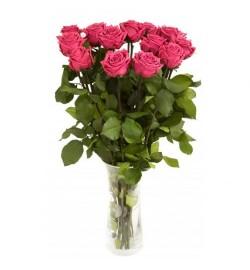 Букет из 13 роз