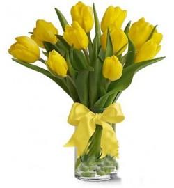 Букет из 11 тюльпанов