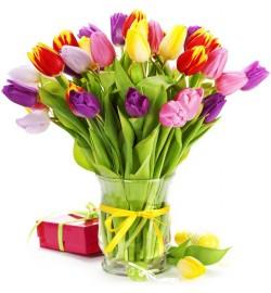 Букет из 25 тюльпанов